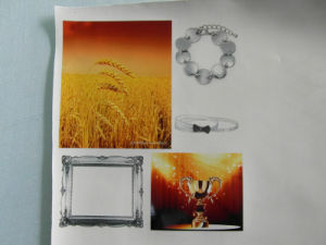 Leather Digital Printing Machine, PU Printer (Colorful1225) pictures & photos
