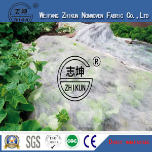 PP Polypropylene Agriculture Non Woven Fabric with UV pictures & photos