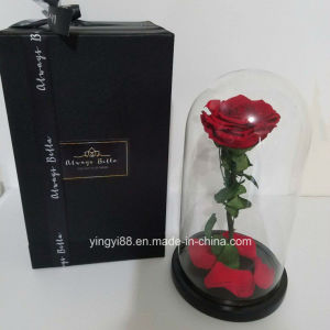 Custom Gorgeous Designs Acrylic Flower Vase pictures & photos