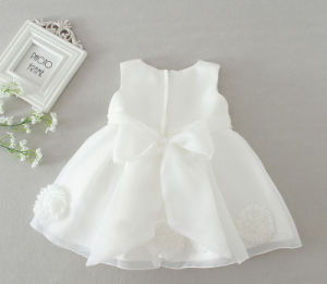 Baby Girl Dress Christening Baptism Gowns Flower Girl Dress pictures & photos