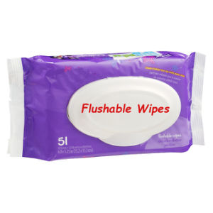 Flushable Wet Wipes pictures & photos
