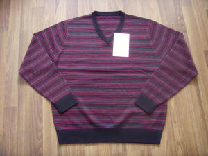 Men′s Sweater 1132
