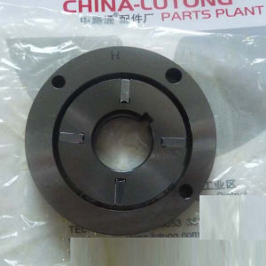 Supply Pump (146100-0120) 9 461 610 089 pictures & photos