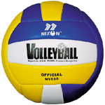 Professional Volleyball (NE530) pictures & photos