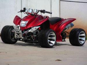 50CC/110CC/125CC New Japanese Style Air Cooled ATV Quad (SBP-GA110)