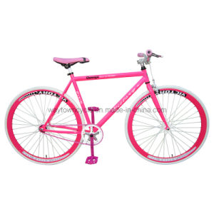 Fixed Bike (WT-2713) pictures & photos