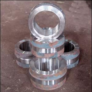 Forging Bearing Ring/Forged Bearing Ring/Bearing Ring Blank pictures & photos