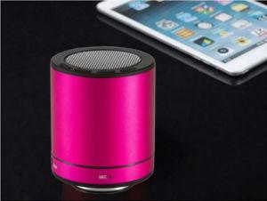 Bluetooth Portable Speaker/Mini Speaker/Bluetooth Speaker