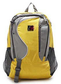 Travel Backpack (DW-6040)