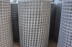Crimped Wire Mesh with Lower Price pictures & photos