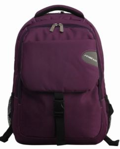Backpack Laptop Computer Leisure Notebook Nylon Function Outdoor Laptop Backpack pictures & photos