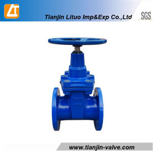Ductile Iron Rubber Seated Gate Valve 30CH39r pictures & photos