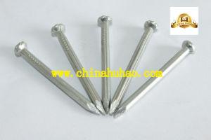 Galvanized Spiral Shank Checkered Head Concrete Steel Nails pictures & photos