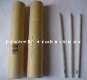 12pk 2 Logo Recycled Craft Hb Paper Pencil (SKY-806) pictures & photos