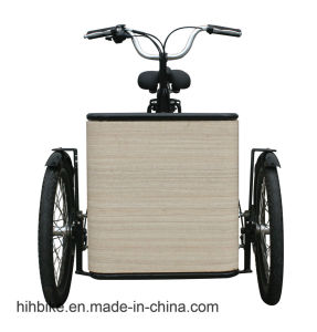 Factory Producer Mini Electric Cargo Trycicle Adults Bike for Sale pictures & photos