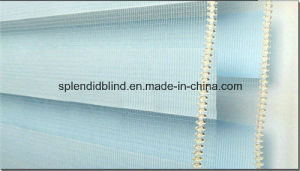38mm Tube Roller Fabrics Blinds (SGD-R-3010) pictures & photos