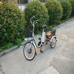 High Quality Pedelec Three Wheeled Electric Tricycle pictures & photos