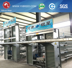 288 Capacity Layer Bird Cages for Big Poultry Farm pictures & photos