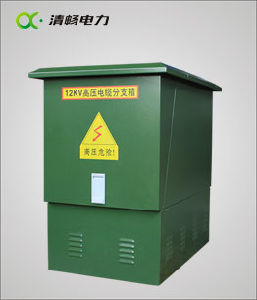 Dfw-12 Type High Voltage Cable Branch Box/Electrical Junction Boxes pictures & photos