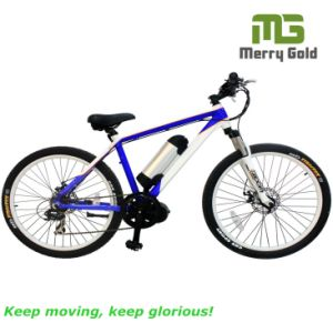Hot Selling OEM 27 Speed Electric Mountain Bike/ E Bike for Wholesale pictures & photos
