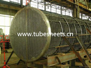 Forged Tube Sheet for Pressure Vessel