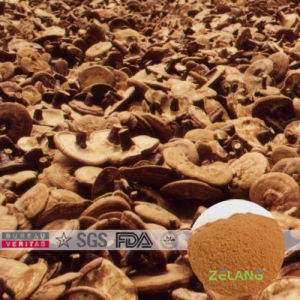 100% Cold Water Soluble Crude Ganoderma Lucidum Extract pictures & photos