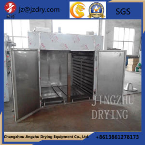 Sell Like Hot Cakes Medicinal GMP Drying Oven pictures & photos