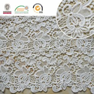 Embroidery Lace Fabric, Floral Pattern, Fashion and Beautiful for African and Swiss Lady Dress E20024 pictures & photos