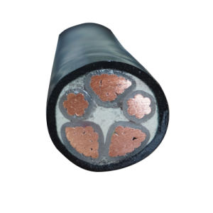 Copper Conductor XLPE Insulation PVC Sheath Power Cable Wire pictures & photos