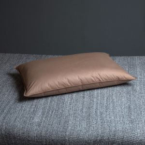 300tc Goose Down Pillows and Cushions From Hangzhou pictures & photos
