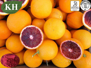 100% Natural Blood Orange Extract 5% Anthocyanidins pictures & photos