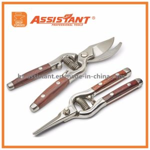 Floral Secateurs Hand Pruners PTFE Coated Drop Forged Pruning Shear pictures & photos