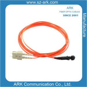 mm 62.5/125 Dx Fiber Optic Patch Cord 3m pictures & photos