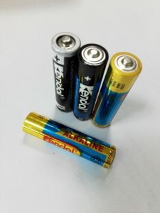 LR03 AAA Alkaline Battery pictures & photos