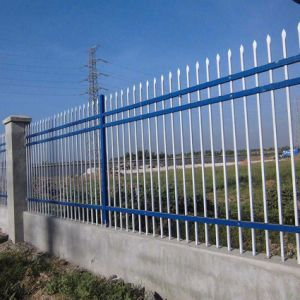 Powder Coated Garden Fence /Decorative Fence pictures & photos