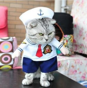 Navy Design Pet Costume Clothing pictures & photos