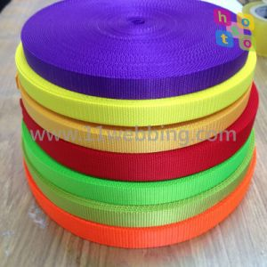 20mm Nylon Webbing for Dog Leashes and Collars pictures & photos
