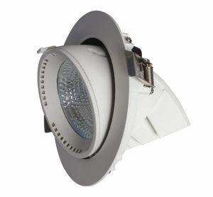 15W COB Ressessed Rotational LED Downlight pictures & photos