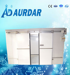 Changzhou Automatic Cold Store Freezer Room Sliding Door pictures & photos