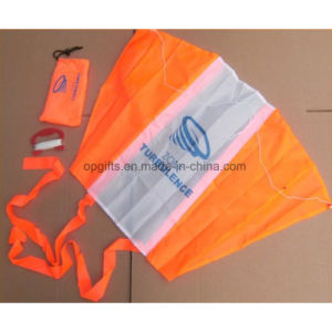 Hot Sale Custom Chinese Triangle Kite pictures & photos