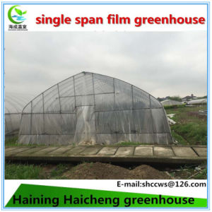 Steel Structure Greenhouses for Mushroom pictures & photos