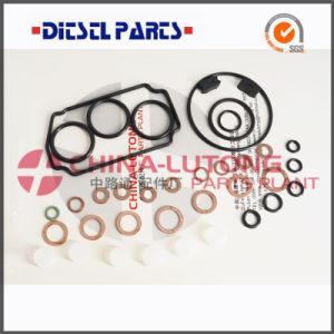 Car Engine Parts Ve Pump Rebuild Kits-Repair Kit OEM 146600-1120 pictures & photos