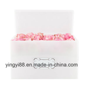 New Acrylic Plastic Rose Box, Custom Size and Color pictures & photos