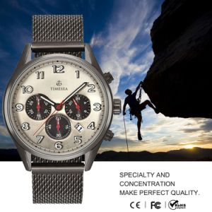 Mens Chronograph Watch Manufacturer Price of Western Steel Quartz Watches72401 pictures & photos
