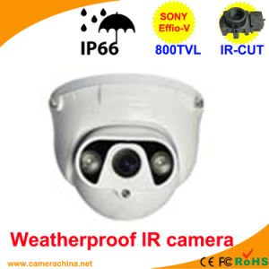 50m LED Array Sony 800tvl Dome Color IR CCD Camera pictures & photos