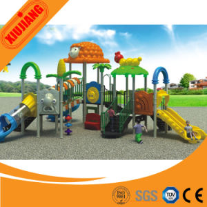 Designer/Crazy Selling/Kids Plastic Outdoor Playgrounds pictures & photos