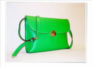 Latest Design Beautiful Fashion Bag for Women pictures & photos