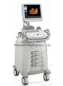 Hospital Mobile Echo Cardiograph Cardiac Ultrasound 3D 4D Color Doppler (D60) pictures & photos