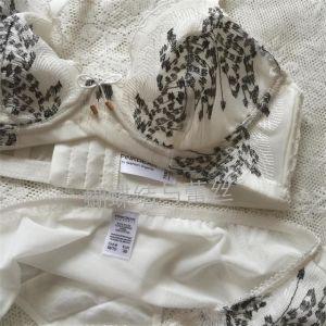 Latest Design Ultra-Thin Underwear Sexy Bra Set (CS21128) pictures & photos