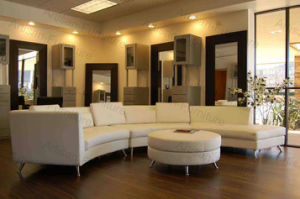 China waiting room reception sofa furniture for boston hair salons jp sf 352 china salon for Image joli salon